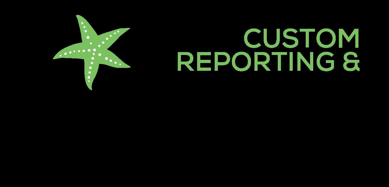 Custom Reporting & Analytics Graphic